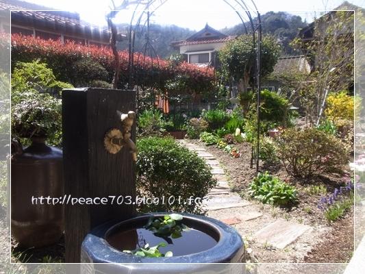 庭の花20140401003