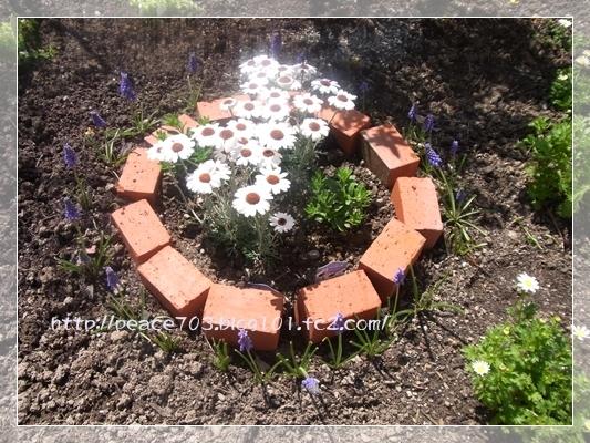 庭の花20140401004