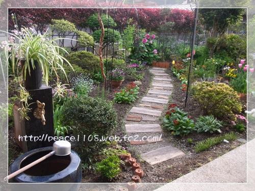 庭の花1002
