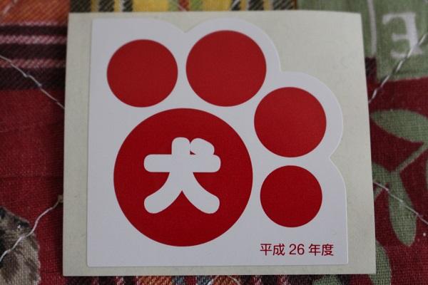 2014.06.28 狂犬病予防接種-5