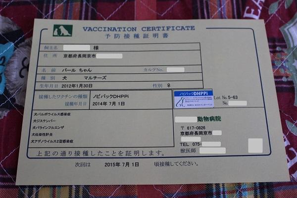 2014.07.08 混合ワクチン接種-9