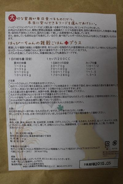 2014.07.17 フードジプシー再び+観葉植物植え替え-2