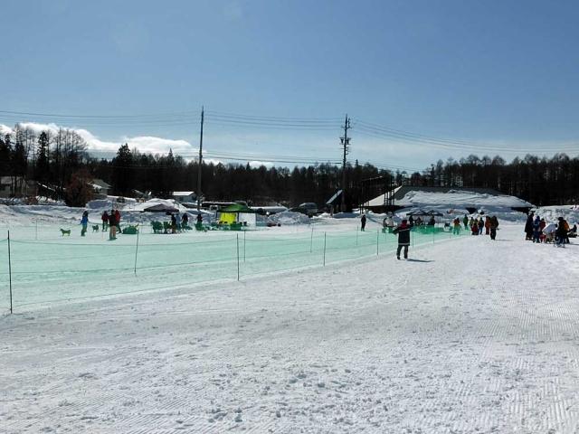 雪上運動会  (8)