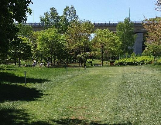 s-平岡公園PG場 (3)