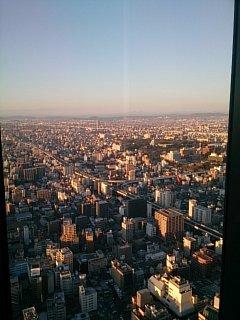名古屋城、木曽連山を臨む