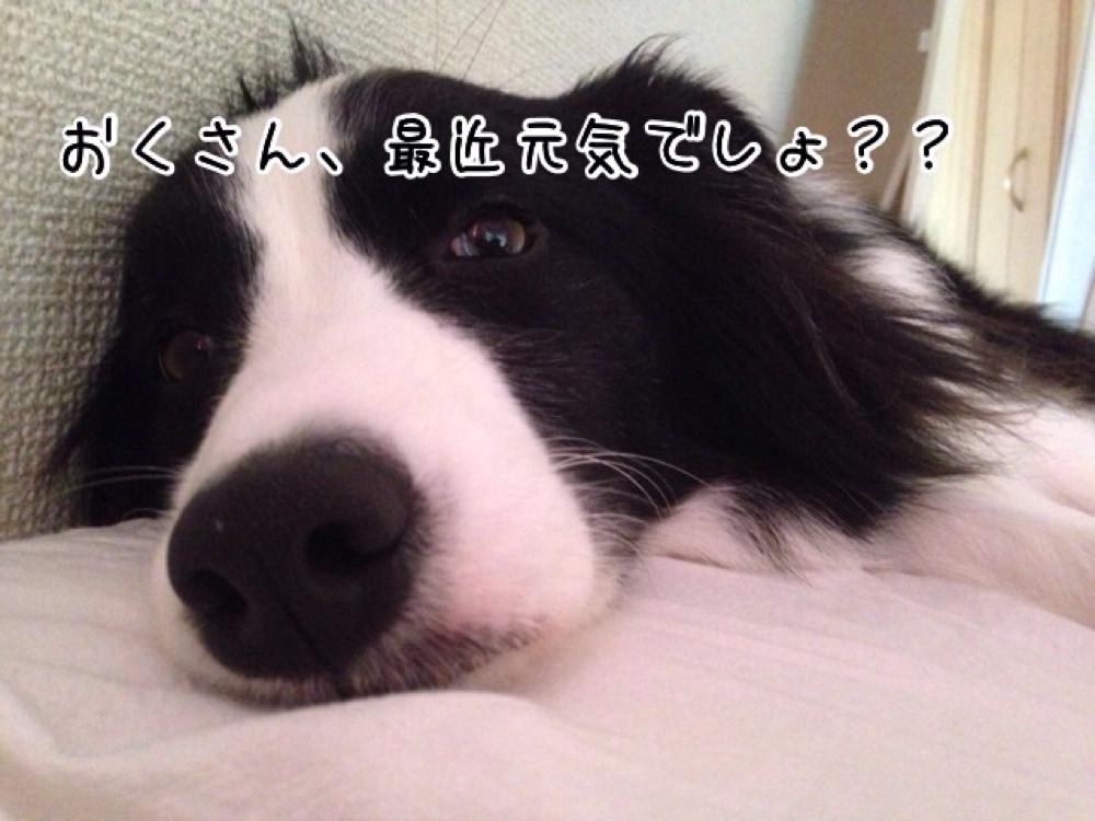 fc2blog_20140716130217778.jpg
