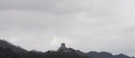 鳥取に0111