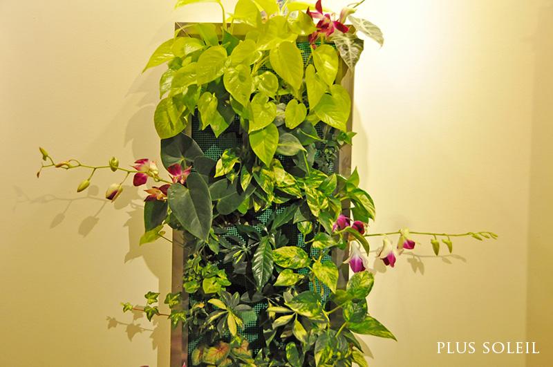 plantwallno3.jpg