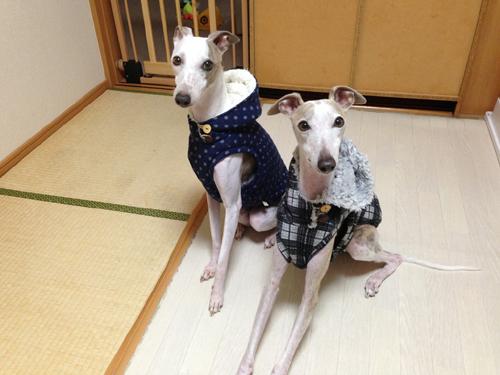 リリィ&ジェイ