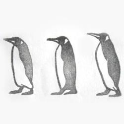 オオサマペンギン行進