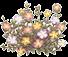 ld_royalgarden_pola_20140420235238b7b.png
