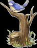 ld_wood2_birdtree.png