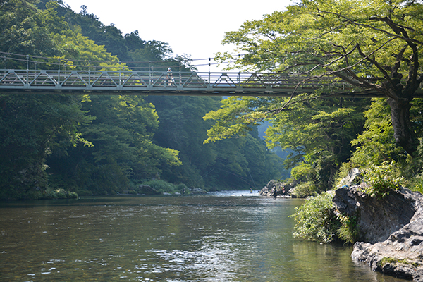 澤乃井園前の清流