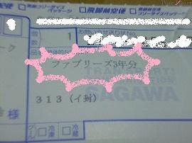 P10007231.jpg