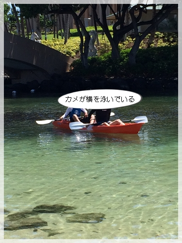 ボートを借りる