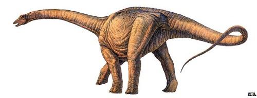 _74905252_e4460505-argentinosaurus_dinosaur-spl.jpg