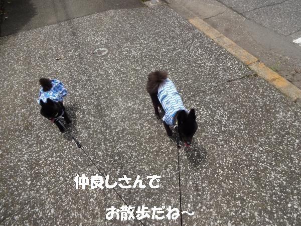 縺奇シ狙convert_20140708184429