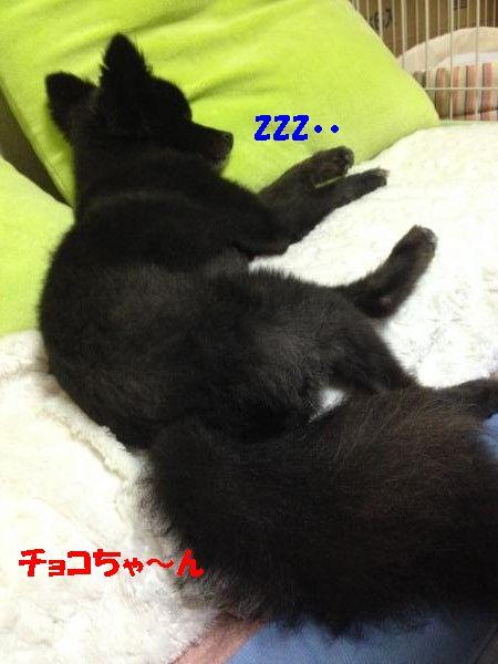 縺ュ・狙convert_20140708190323