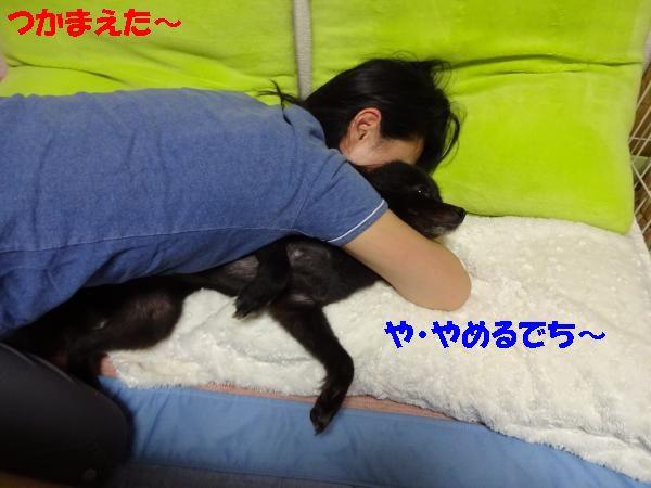縺ュ・胆convert_20140708190341