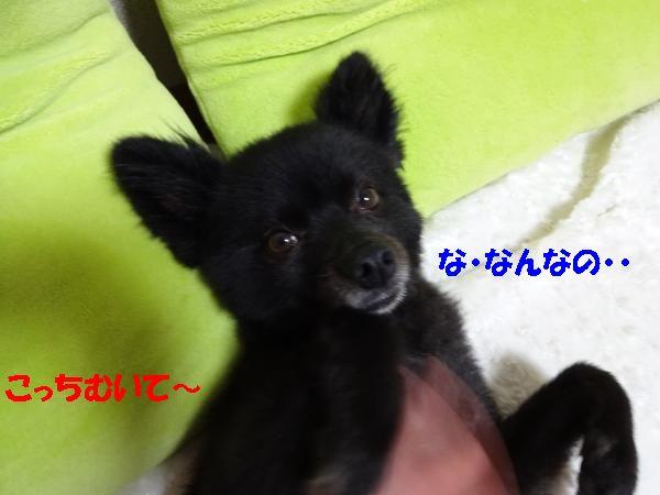 縺ュ・点convert_20140708190358