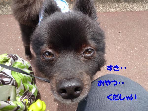 縺・シ胆convert_20140708185404