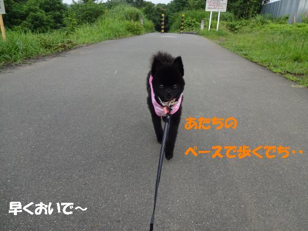 縺ヲ・狙convert_20140721205441