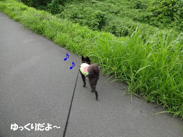 縺ヲ・点convert_20140721205526