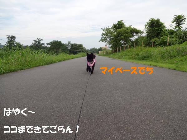 縺ヲ・農convert_20140721205547