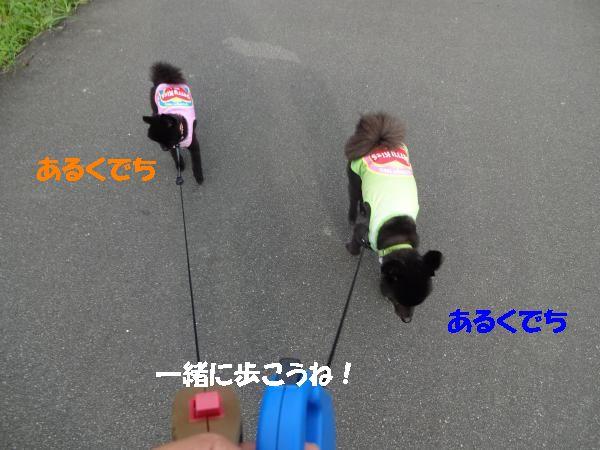縺ヲ・棒convert_20140721205632