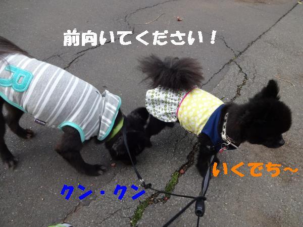 22_convert_20140624183633.jpg