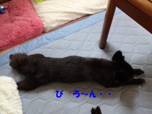 4_convert_20140814192350.jpg