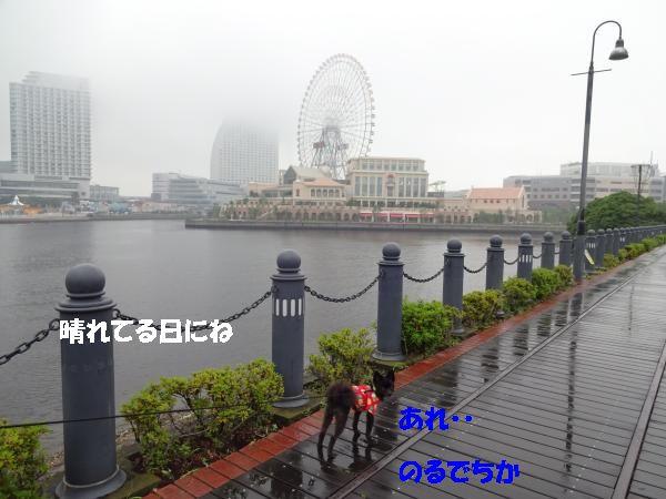 DSC01215_convert_20140709224359.jpg