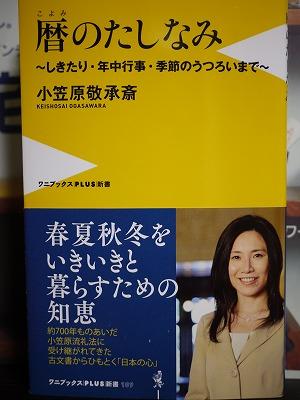 P1100131.jpg