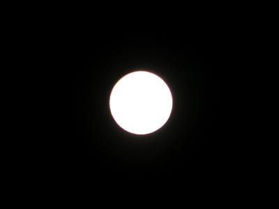P9081961A.jpg