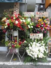 【新店】蔦の葉-15