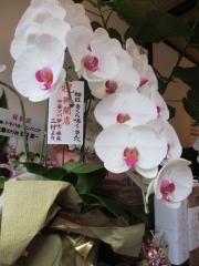 【新店】麺匠 さくら咲く-4
