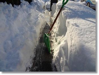 大雪DSC03522