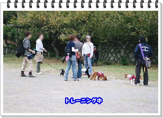 2005ブログNo4