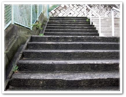 神奈川県立音楽堂へ行く途中の階段