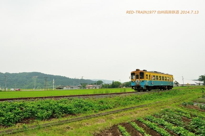 aDSC_7811.jpg