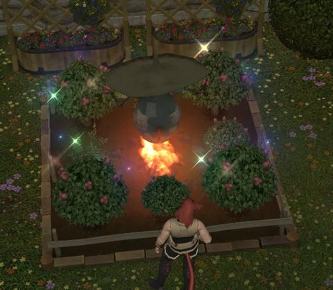 美しい焼畑