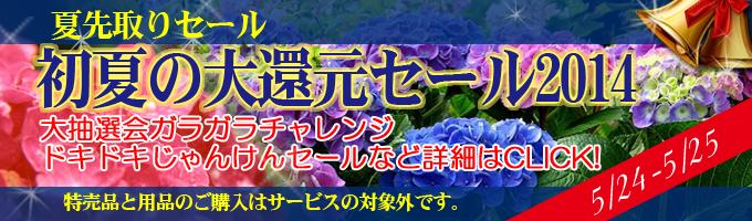 banner_earlysummer_20140522195750c78.jpg