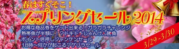top_banner_2014032822365065a.jpg