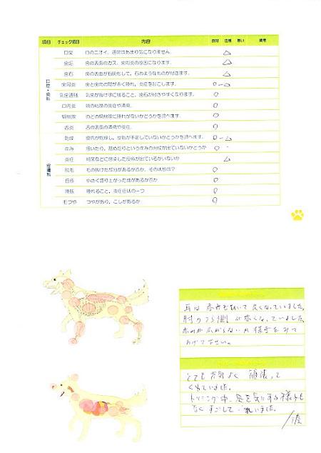 動物病院(0201)22