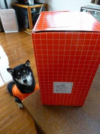郵便丸形ポスト貯金箱1