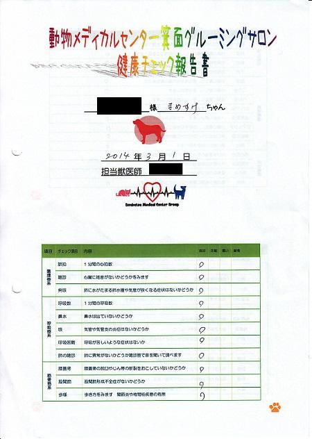 動物病院東京チカラめし17