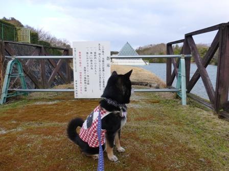 青山ガーデンリゾート6