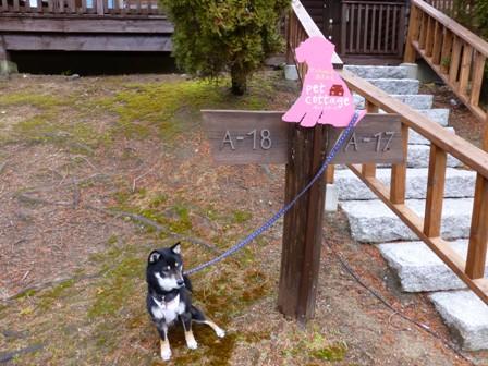 青山ガーデンリゾート14