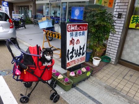 中村藤吉本店39