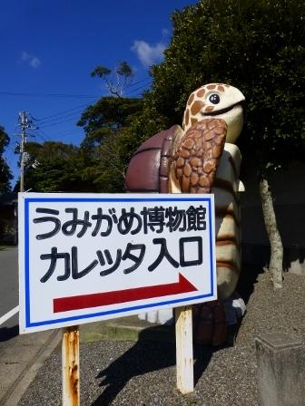 日和佐うみがめ博物館カレッタ2